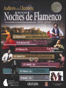 III-ciclo-noches-de-flamenco