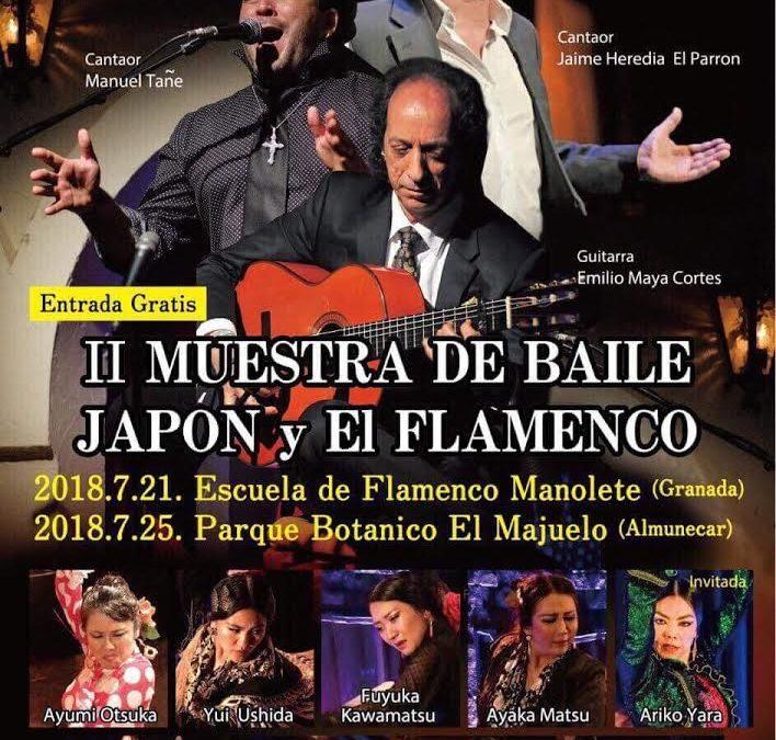"""II Muestra de baile """"Japón y el Flamenco"""""""